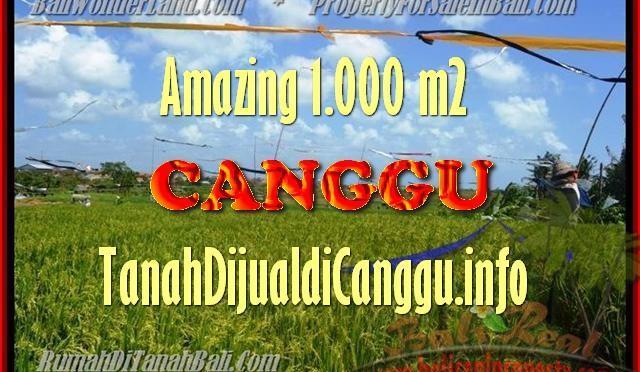 INVESTASI PROPERTI, DIJUAL MURAH TANAH di CANGGU TJCG154