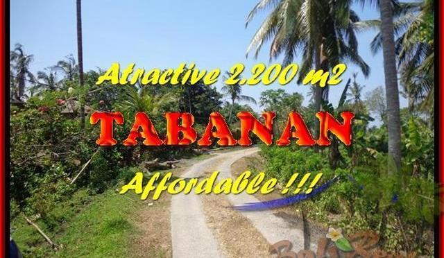 DIJUAL TANAH di TABANAN BALI 2.200 m2 di Tabanan Selemadeg