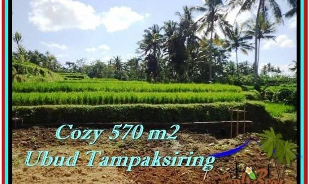 TANAH di UBUD DIJUAL 570 m2 di Ubud Tampak Siring