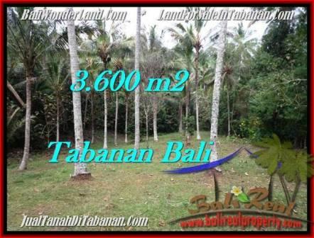 JUAL TANAH MURAH di TABANAN BALI 3,600 m2 di Tabanan Selemadeg