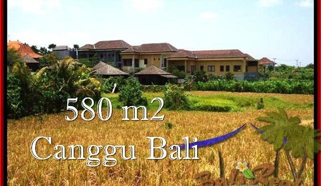 JUAL TANAH di CANGGU 580 m2 View sawah, lingkungan villa