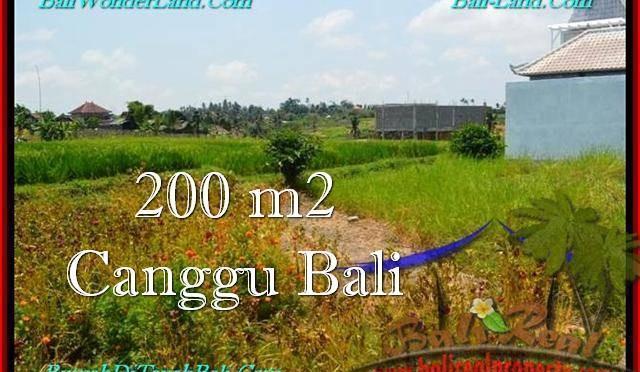 TANAH di CANGGU BALI DIJUAL 2 Are View sawah, lingkungan villa