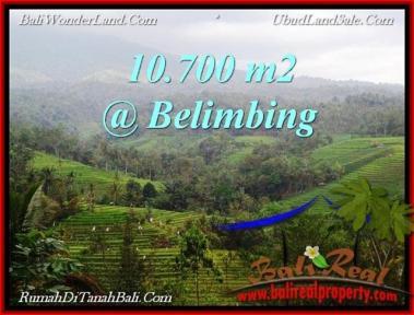 JUAL MURAH TANAH di TABANAN BALI 107 Are View Gunung, sawah