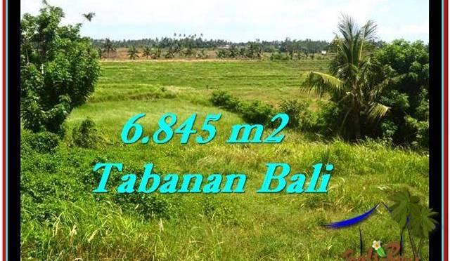 TANAH di TABANAN BALI DIJUAL MURAH 6,845 m2 di Tabanan Selemadeg