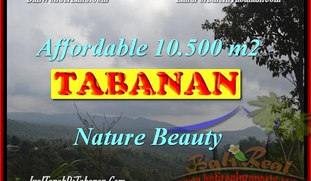 JUAL TANAH MURAH di TABANAN 10,500 m2 View gunung dan kebun