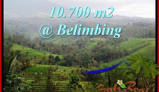 TANAH di TABANAN JUAL MURAH 10,700 m2 View Gunung, sawah