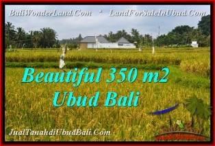TANAH di UBUD BALI DIJUAL MURAH Untuk INVESTASI TJUB540