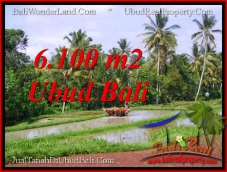 JUAL TANAH di UBUD 6,100 m2 View Sawah lingkungan villa