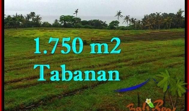 TANAH di TABANAN DIJUAL TJTB262