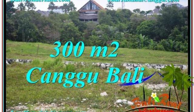 JUAL MURAH TANAH di CANGGU Untuk INVESTASI TJCG205