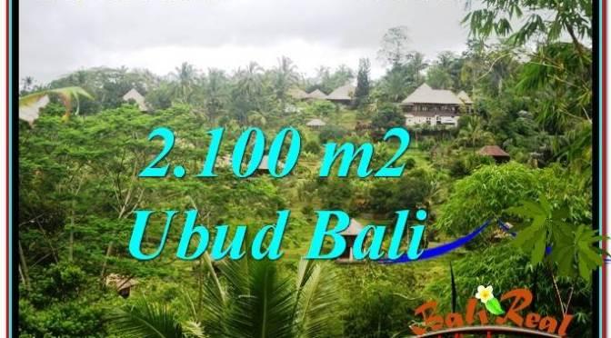JUAL TANAH MURAH di UBUD BALI 21 Are di Ubud Payangan