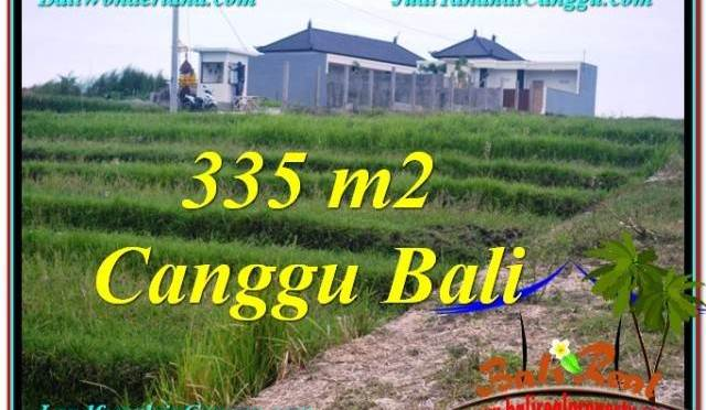 TANAH DIJUAL MURAH di CANGGU BALI 335 m2 di Canggu Umalas