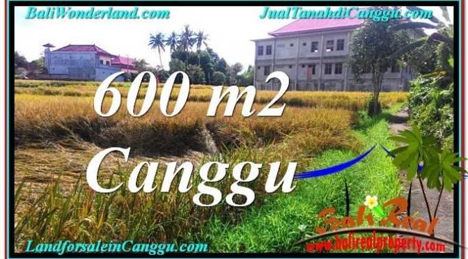DIJUAL TANAH MURAH di CANGGU BALI Untuk INVESTASI TJCG211