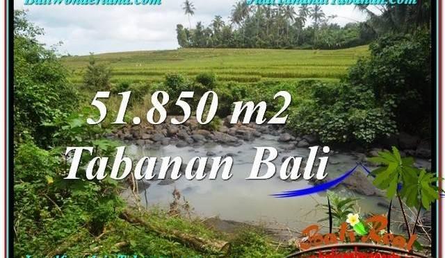 TANAH MURAH JUAL di TABANAN BALI 518.5 Are View Sawah dan Sungai