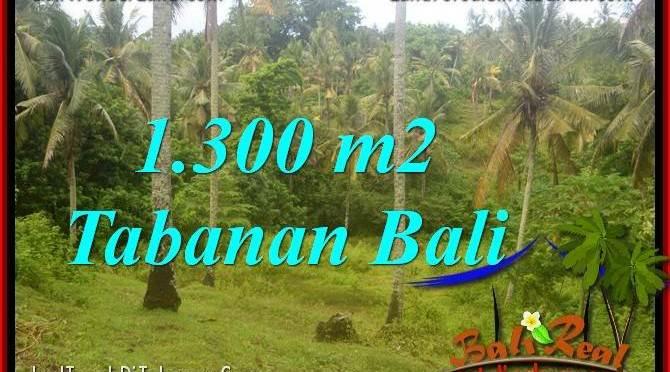 TANAH MURAH di TABANAN Untuk INVESTASI TJTB314