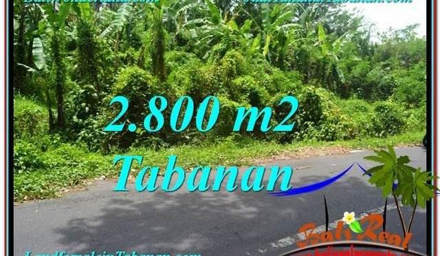 TANAH MURAH DIJUAL di TABANAN BALI 28 Are di Tabanan Kerambitan