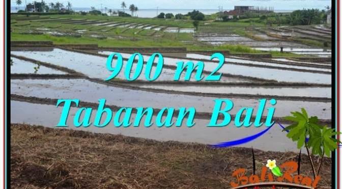 TANAH DIJUAL di TABANAN BALI Untuk INVESTASI TJTB308