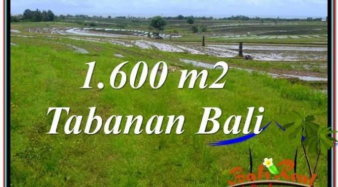 JUAL TANAH MURAH di TABANAN 1,600 m2 View Laut, Gunung dan sawah