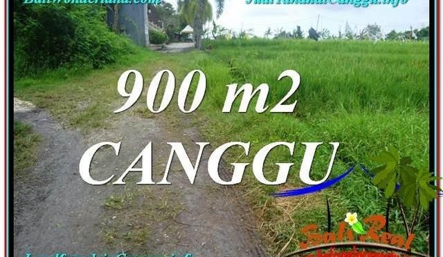 DIJUAL TANAH MURAH di CANGGU BALI 900 m2 di Canggu Batu Bolong