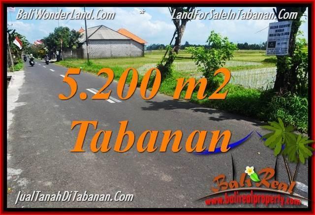 TANAH DIJUAL MURAH di TABANAN BALI 5,200 m2 di Tabanan Kediri