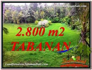 TANAH DIJUAL di TABANAN BALI 2,800 m2  View  sawah