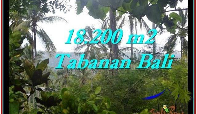 JUAL TANAH MURAH di TABANAN 18,200 m2 di Tabanan Selemadeg