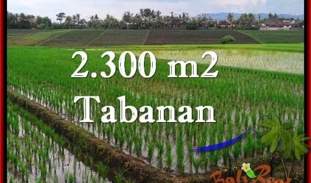 TANAH MURAH JUAL di TABANAN BALI 2,400 m2 View Laut, Gunung dan sawah