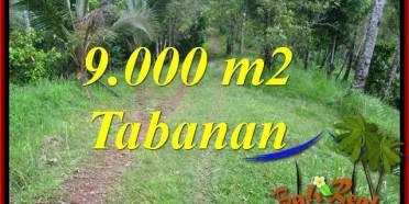 JUAL TANAH di TABANAN 9,000 m2 View kebun