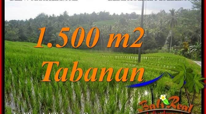 TANAH DIJUAL di TABANAN 15 Are View sawah