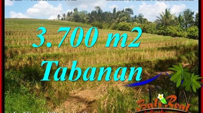 TANAH di TABANAN DIJUAL MURAH Untuk INVESTASI TJTB377