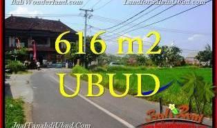 TANAH di UBUD BALI DIJUAL MURAH 6 Are di Sentral Ubud