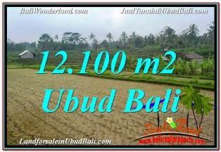TANAH MURAH DIJUAL DI UBUD BALI 12,100 m2 VIEW SUNGAI DAN TEBING