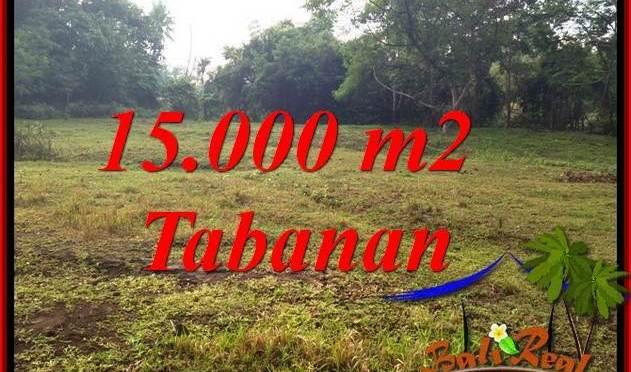 DIJUAL TANAH MURAH di TABANAN BALI 150 Are di TABANAN KOTA