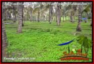 DIJUAL TANAH MURAH di TABANAN 7,500 m2 di TABANAN SELEMADEG