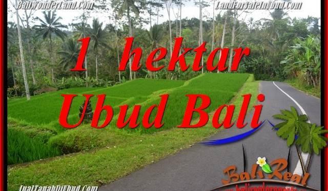 Dijual Murah Tanah di Ubud Bali TJUB683