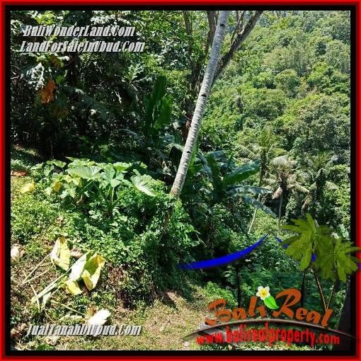JUAL Tanah di Ubud 3,300 m2  View sungai, lingkungan Villa, Restoran dan Hotel