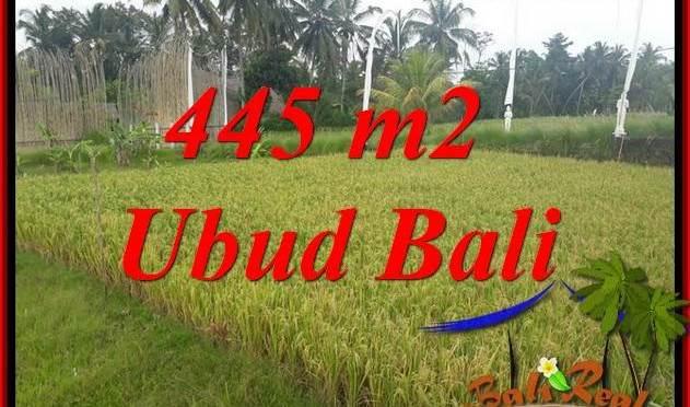 Dijual Tanah Murah di Ubud Bali 4 Are di Ubud Pejeng