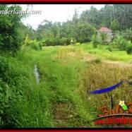 Tanah Murah di Tabanan Bali Dijual TJTB396