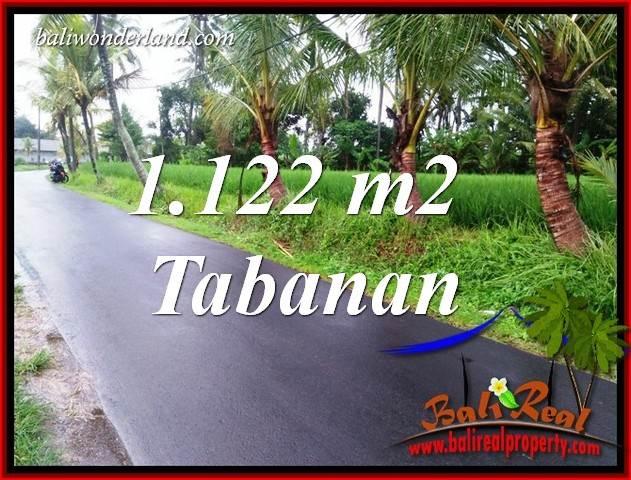 Tanah Murah di Tabanan Bali Dijual 11.22 Are View Sawah, Gunung dan Sungai Kecil