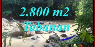 Tanah Murah di Tabanan Bali Dijual 28 Are View Kebun dan Sungai