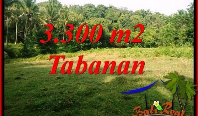 Dijual Murah Tanah di Tabanan Bali 3,300 m2 di Tabanan Selemadeg