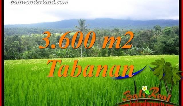Dijual Murah Tanah di Tabanan Bali 3,600 m2 di Tabanan Penebel