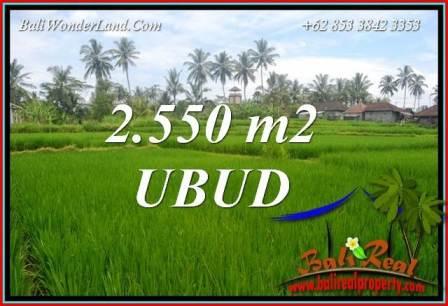 Tanah di Ubud Bali Dijual Murah TJUB700