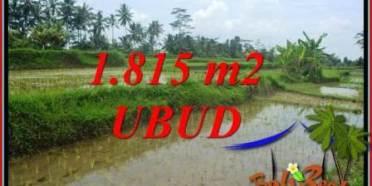 JUAL Tanah Murah di Ubud TJUB703