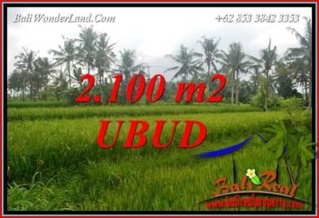 Tanah di Ubud Dijual Murah TJUB710
