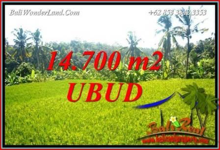 Tanah Murah Dijual di Ubud 14,700 m2 di Ubud Tegalalang