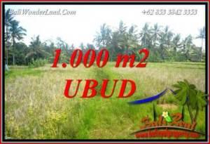 Tanah Dijual Murah di Ubud TJUB727