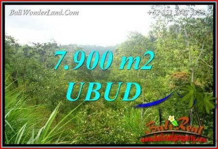 Tanah Dijual di Ubud Bali 7,900 m2  View Tebing dan sungai