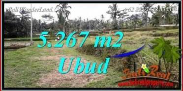 JUAL Tanah di Ubud Bali 5,267 m2 di Ubud Tegalalang