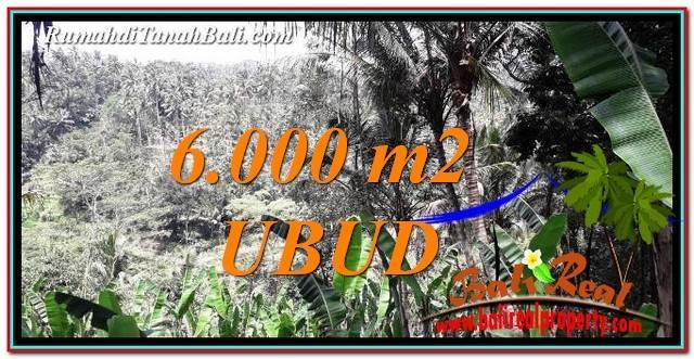 INVESTASI PROPERTI, TANAH DIJUAL di UBUD BALI TJUB750